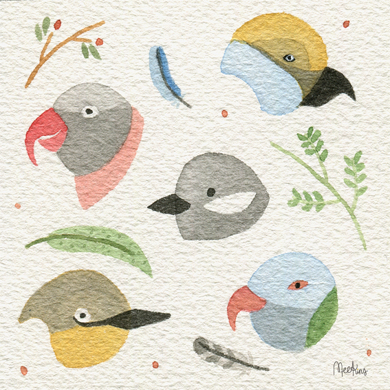 Bird faces, because I love birds