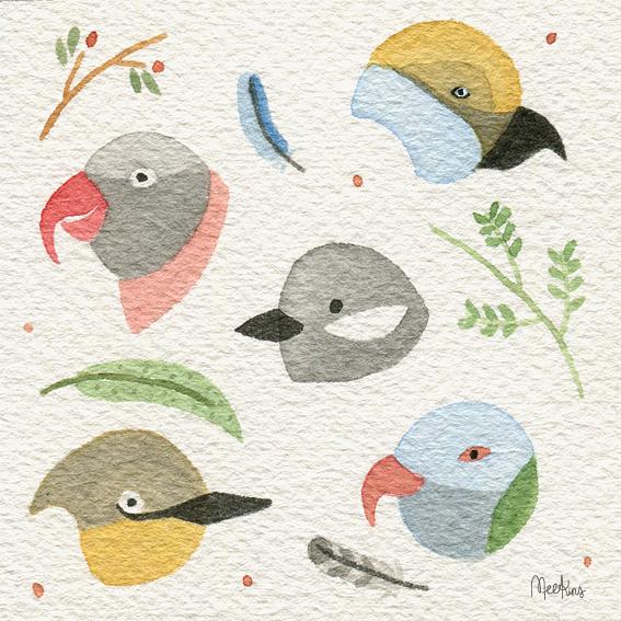 bird_faces_meekins