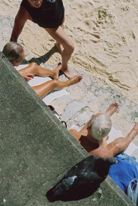 Sun bathers at Manly Beach, Australia.