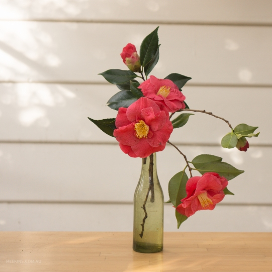 meekins_flower_arrangements-1-2